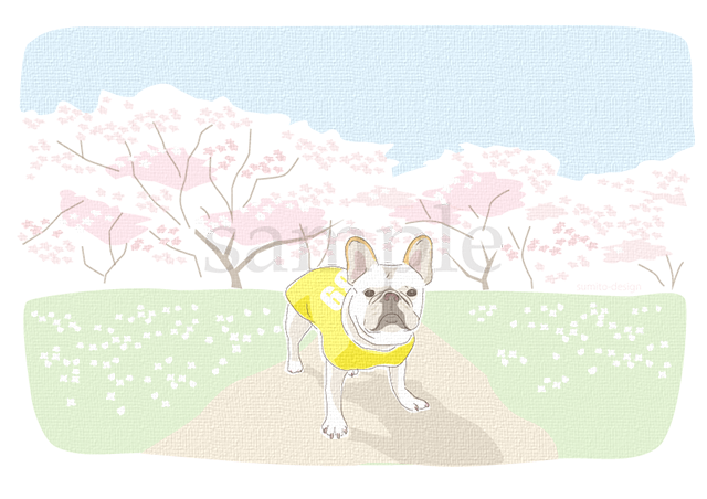 spring-card-001